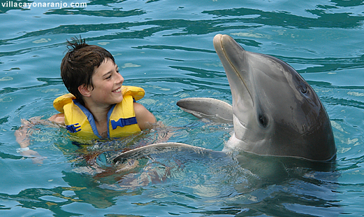 Swimming with dolphins in Aquarium Cayo Naranjo